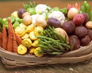 Vegetable Grower Meeting