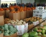 Orleans Produce Auction Winter Meeting