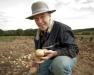 Fresh Market Potato Varieties, Disease & Insect Management Twilight Meeting