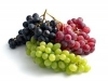 Growing Table Grapes for Profit Webinar Series