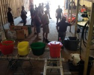 Post-Harvest Wash/Pack Shed Operation Training