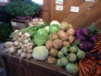 Northern Vegetable School