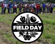 2017 Fresh Market Vegetable Field Day