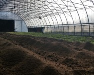 Best Management Practices for High Tunnel Nutrition and Soil Health