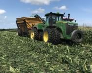 2017 Processing Vegetable Crops Advisory Meeting