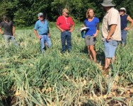 Pre-Season Onion Weed Management Meeting (Wayne County)