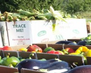 Finger Lakes Produce Auction Growers Meeting (Yates)