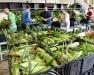 Fresh Market Vegetable Grading & Packing Workshop