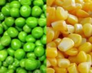 Green Pea and Sweet Corn Advisory