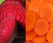 Beet and Carrot Advisory Meeting