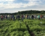 2021 Oswego County Onion Growers Twilight Meeting