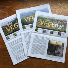 Three issues of VegEdge newsletter