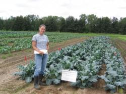 2010 Broccoli Variety Evaluation