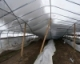 Salvaging Your Greenhouse After a Heavy Snow Storm