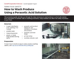 How to Wash Produce Using a Peracetic Acid (PAA) Solution