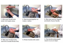 Sample SOPs on Hand Washing and On-Farm Injury