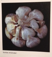 NOFA Garlic Presentation