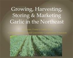 Garlic Production in the Northeast (from NOFA NY's Winter Conference, 2015)