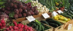 Average Weekly Farmers Market Prices