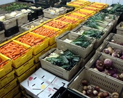 Cold Storage Chart and Reference Guide to Commercial Vegetable Storage