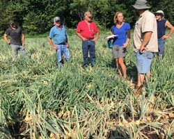 """Muck Onion """"Research Scouting"""" Program"""