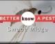 Video: Swede Midge
