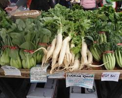Exploring Ethnic Vegetables