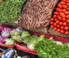 Farmers Market Directory of the Region
