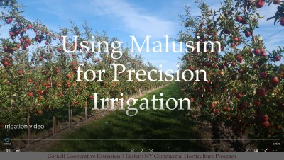 Planning Your Irrigation with Malusim