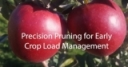Precision Pruning for Early Crop Load Management