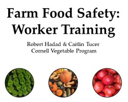 Video Series: Essentials of Food Safety for Farmworkers